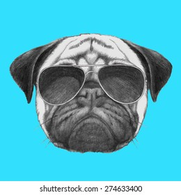 Hand drawn portrait of  Pug Dog with sunglasses. Vector isolated elements.