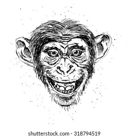 Hand drawn portrait of smile Monkey. Vector isolated elements.