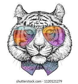 Hand drawn portrait of Tiger in glasses. Vector illustration isolated on white