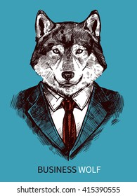 Hand drawn poster of business wolf in suit portrait on blue background fashion vector illustration