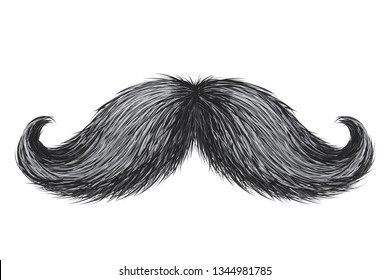 Hand drawn realistic vector vintage retro mustache isolated.