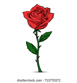 Hand drawn red rose on white background. Vector eps10