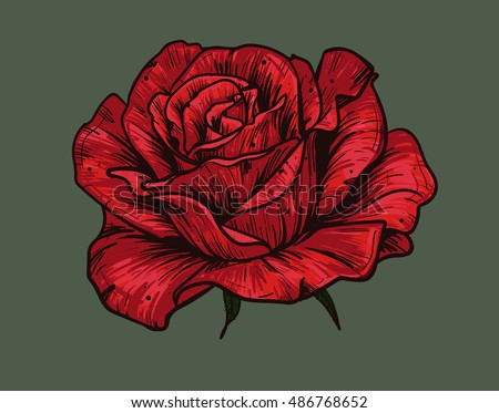 Hand Drawn Red Rose On Green Stock Vector Royalty Free 486768652