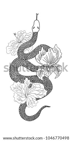 9b9513bf063b9 hand drawn Red snake vector with hibiscus flower and iris flower  isolate.Snake tattoo design.black and white snake with flower. - Vector