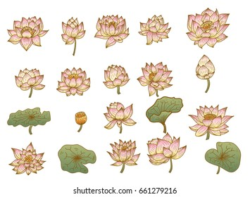Hand drawn romantic beautiful line art of Lotus set,Hand drawn lotus flower isolate vector set.Beautiful pink lotus flower set