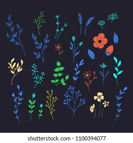 Hand drawn romantic flowers. Vector floral elements.