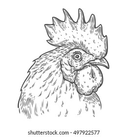 Hand drawn rooster cock head vector illustration. Farm animals, Vintage engraving style. Sketch chicken portrait isolated on white background. Symbol of new year 2017