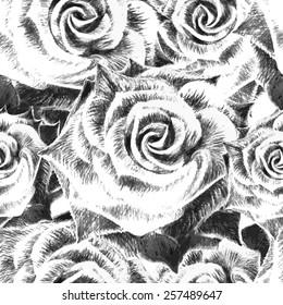Hand drawn rose flower background. Vector illustration