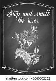 Hand drawn rose flower chalk sketch, with white lettering slogan Stop and smell the roses on black chalkboard background. Vector vintage illustration.