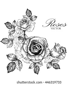 hand drawn rose, greeting card