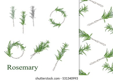 Hand drawn Rosemary sprigs, wreaths and laurels. Perfect for wedding invitations, stationery design, blogs, websites etc.