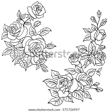 Hand Drawn Roses Flowers Vector Set Stock Vector Royalty Free