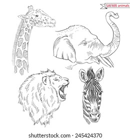 hand drawn safari animal set