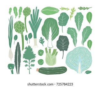 Hand drawn salad greens and leaves isolated on white background in unique trendy organic style. Vector illustration for menu design, packaging, cooking book.