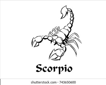 Hand Drawn Scorpio Zodiac Sign in Sketch and line art
