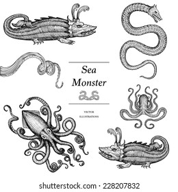 Hand Drawn Sea Monsters