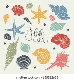 Hand drawn sea shells and stars collection. Marine illustration of ocean shellfish. Colorful seashells isolated on light background.