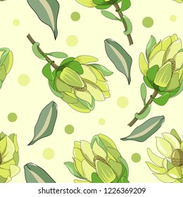 hand drawn seamless pattern of australia native plant Leucadendron protea with dot illustration
