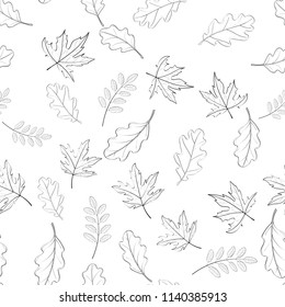 Hand drawn seamless pattern with fallen autumn leaves of various type and color on white background. Autumnal backdrop with colorful foliage. Vector illustration for textile print, wrapping paper.