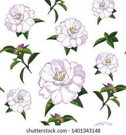 hand drawn seamless pattern of pink rose camellia flower on white background
