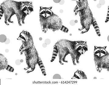 Hand drawn seamless pattern with raccoons on white background
