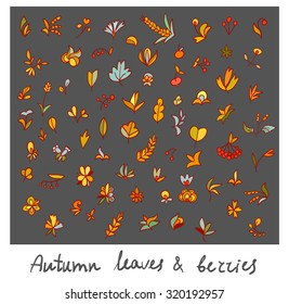 Hand drawn set of autumn leaves, berries and fruits. bright cute collections for your design. each element isolated from another
