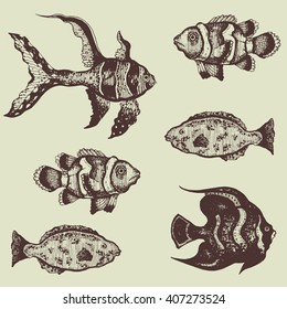 hand drawn set of beautiful tropical fishes vector illustration