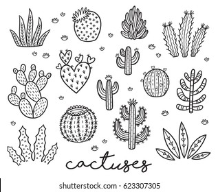 Hand drawn set with cactuses in outline. Vector illustration. Coloring page