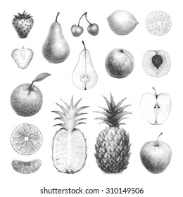 hand drawn set of detailed fruits