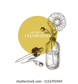 Hand drawn set of essential oil. Vector chamomile daisy flower. Medicinal herb with glass dropper bottle. Engraved art. Good for cosmetics, medicine, treating, aromatherapy, package design healthcare