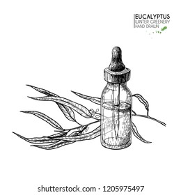 Hand drawn set of essential oils. Vector eucalyptus branch. Medicinal herb with glass dropper bottle. Engraved art. Good for cosmetics, medicine, treating, healthcare, package design, aromatherapy.