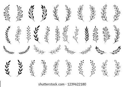 Hand drawn set of floral, plant elements: leaf, branch, vine, flower. Cut isolated vector illustration for your frame, border, ornament design. Doodle sketch style. Floral elements drawn by brush-pen