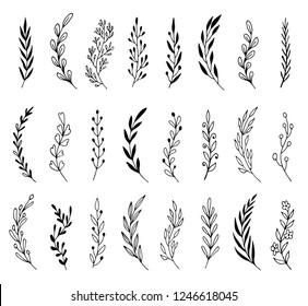 Hand drawn set of floral, plant elements: leaf, branch, vine, flower. Cut isolated vector illustration for your frame, border, ornament design. Doodle sketch style. Floral elements drawn by brush-pen