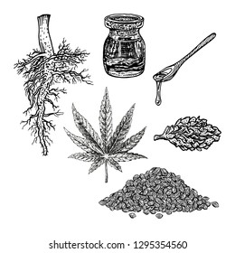 Hand drawn set with hemp leaf cannabis oil cone and bunch of seeds. Isolated sketch of marijuana. Black and white graphic design. Vintage vector illustration.