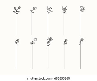 Hand drawn set of line frames on a white background. Sketch elements of floral and herbs ornaments for banner design. Line border collection. Arrows. Isolated separators. Vintage border.