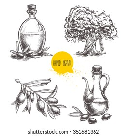 Hand drawn set of olive branch with olives, bottles with olive oil and olive tree. Sketch style vector organic food illustration.