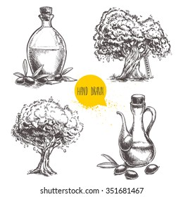 Hand drawn set of olive trees and bottles with olive oil. Sketch style eco food vector illustration.