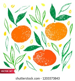 Hand drawn set of orange fruit with texture. Food element collection. Vector illustration of mandarines with leaves. Floral colorful vector elements for design.