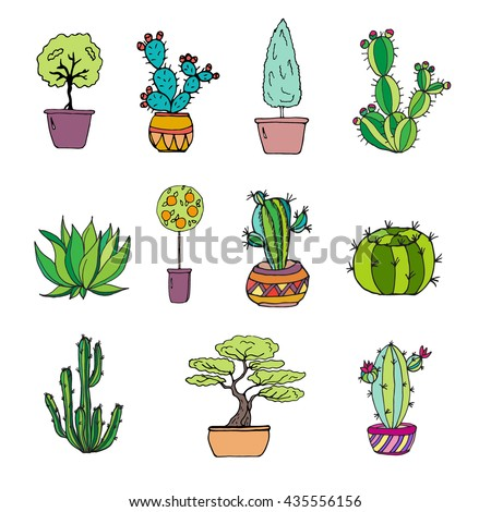 hand drawn set plants different cactus stock vector royalty free