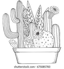 Hand drawn set of succulents or cacti  in pots.  Doodles elements. Black and white. Coloring book page for adult. Summer, succulent, doodles, vector, art design elements. Linear botanical vector.