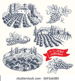 Hand drawn set - wine and wine-making. Vector.