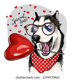 Hand drawn siberian husky with heart shape baloon. Vector Valentine day greeting card. Cute colorful dog wears glasses and bandana. Romantic design. Lovely pet portrait. Poster, banner. Spread love.