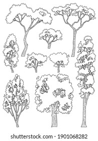 hand drawn side view tree vector set isolated on white background.