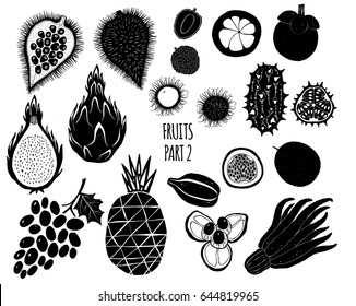 Hand drawn silhouettes of exotic tropical fruits isolated on white background. Vector illustrations for menu, label design in modern style.