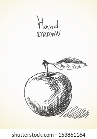 Hand drawn sketch of apple