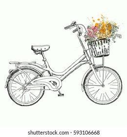 Hand drawn sketch. Bicycle with basket of flowers. Romantic postcard of vintage style. Vector illustration isolated on white background.