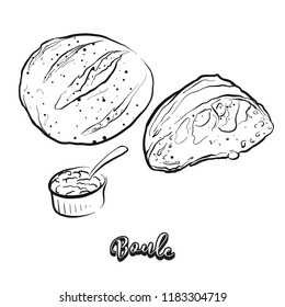 Hand drawn sketch of Boule bread. Vector drawing of Yeast bread food, usually known in France. Bread illustration series.