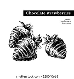 Hand drawn sketch chocolate strawberries dessert bar. Vector black and white vintage illustration. Isolated object on white background. Menu design
