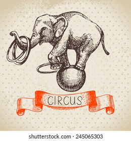 Hand drawn sketch circus and amusement vector illustration. Vintage background