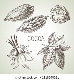Hand drawn sketch cocoa chocolate product set. Vintage vector illustration of natural healthy food